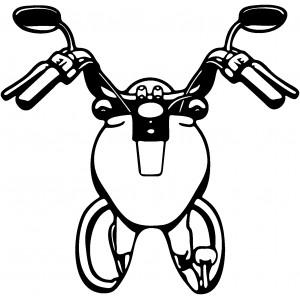 Motorky (52)