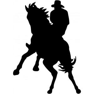 Western (14)