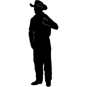 Western (60)