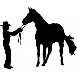Western (67)