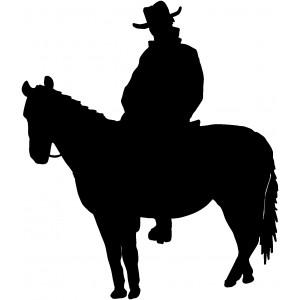 Western (87)