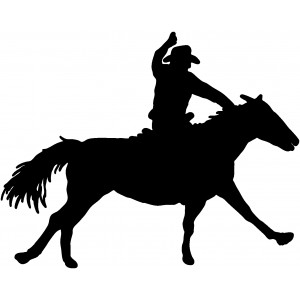 Western (90)