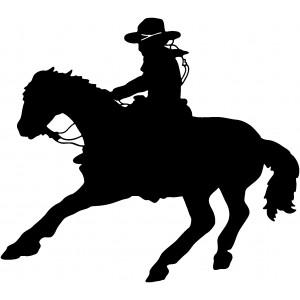 Western (93)