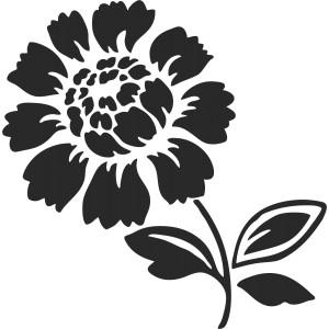 Rastliny a kvety (3)