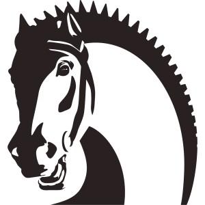 Kone (7)