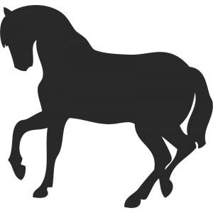 Kone (10)