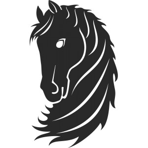 Kone (14)