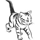 Mačky (1)
