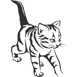 Mačky (2)
