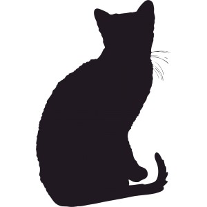 Mačky (7)