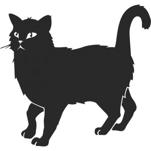 Mačky (9)