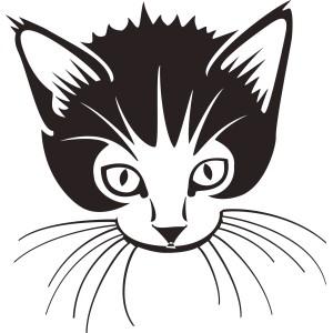 Mačky (10)