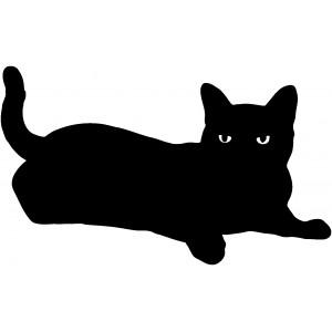 Mačky (12)