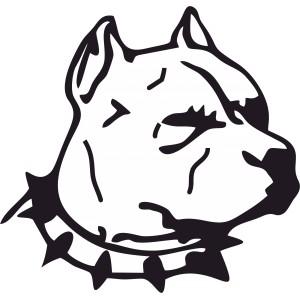 Psi (2)