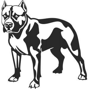 Psi (9)