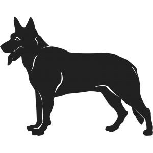 Psi (10)