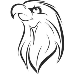 Vtáci (3)