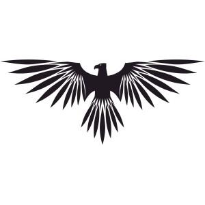 Vtáci (5)