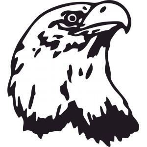 Vtáci (7)