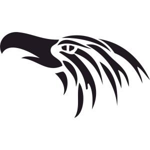 Vtáci (11)