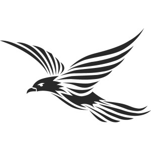 Vtáci (13)