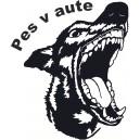 Psi (1)